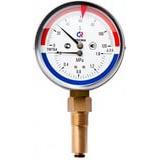 Термоманометр ТМТБ-31P Dy 80  с нижним подключением 1/2